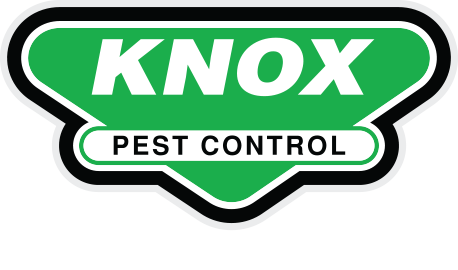 knox pest.png