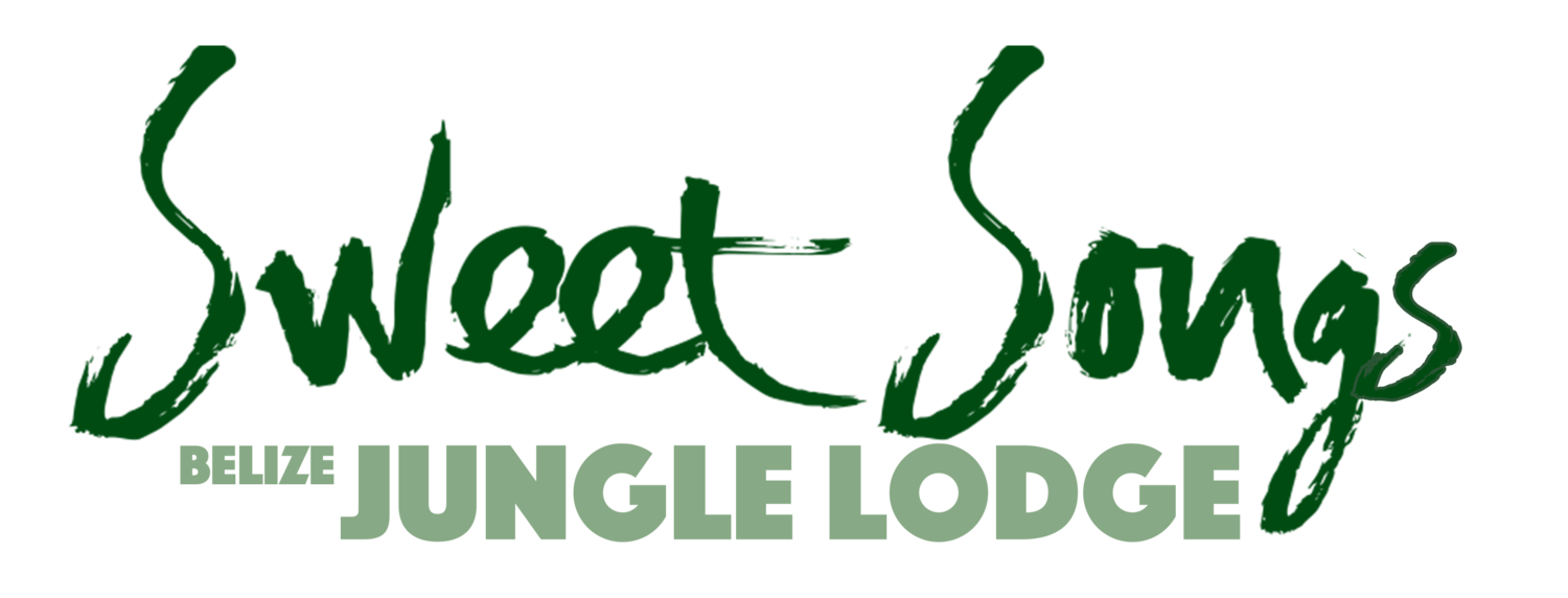 Sweet Songs Lodge