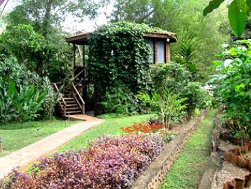 Alojamiento- Tree House.JPG