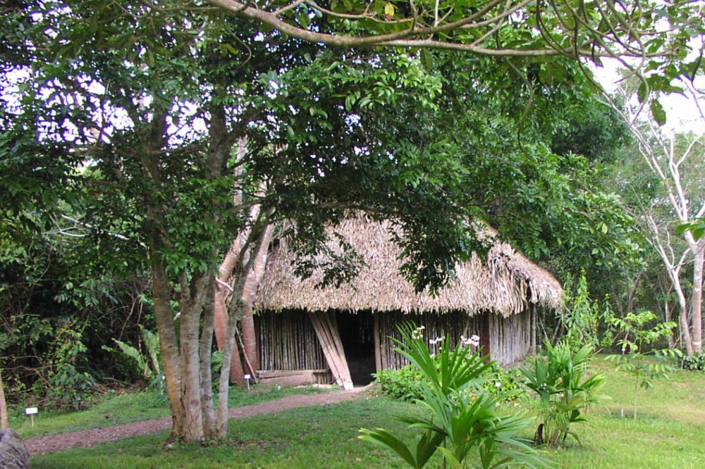Maya Hut & Medicine Trail - Visit the Medicine Trail and learn how plants were used by the ancient Maya for ritual, medicine and daily living. The Maya knew how to make all they needed from the forests around them, some of which are on display inside the Maya House.