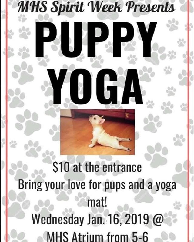 Love Puppies?✔️⠀ Love Yoga?✔️⠀ Love raising money to help kids?✔️⠀ Yes to all! 👍⠀ *⠀ So I'll be leading a Puppy Yoga Class next Wednesday to help raise money for Mauldin High School's spirit week. I have no clue what that really means other than puppies walking around while practicing yoga... Have you ever practiced Puppy (or goat, chicken, or horse) yoga?? How was it? 🤷♀️⠀ *⠀ This should be interesting and tons of fun!! 🐾🐶