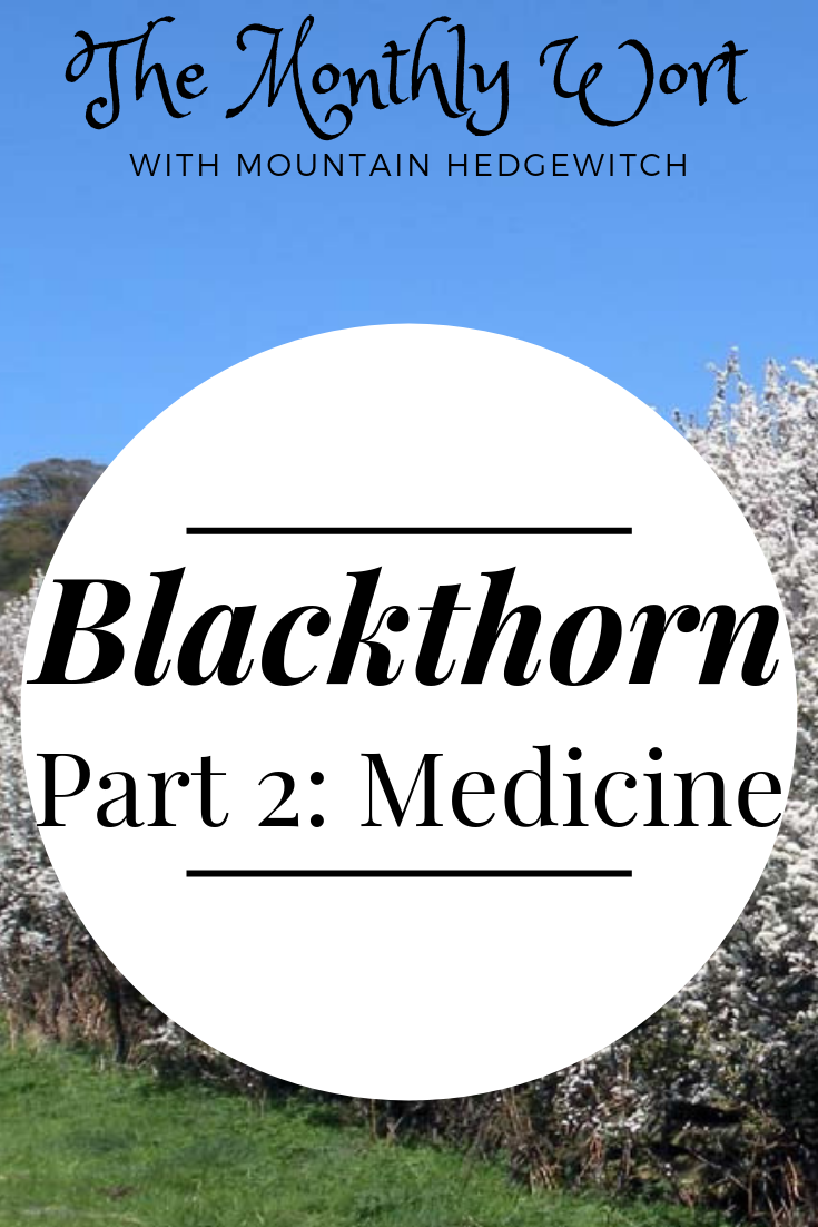 MW Blackthorn pin 2.png