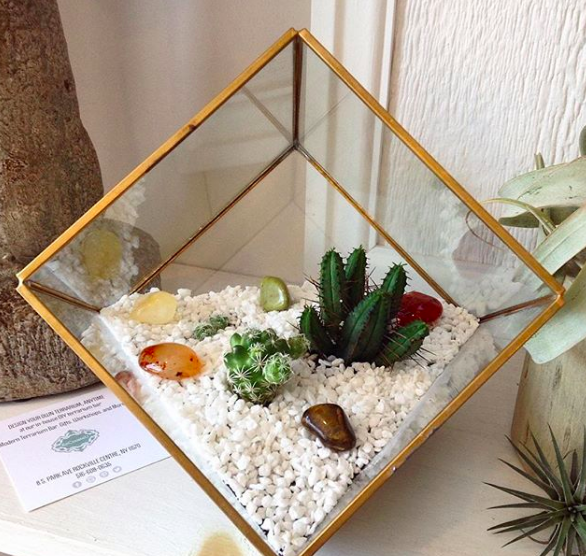 Unique terrariums like this one are what we take pride in. Customize your DIY terrarium by utilizing our add on bar inside the facility. This particular terrarium used white gravel and mini cacti plants to make their creation a stunning piece of art.