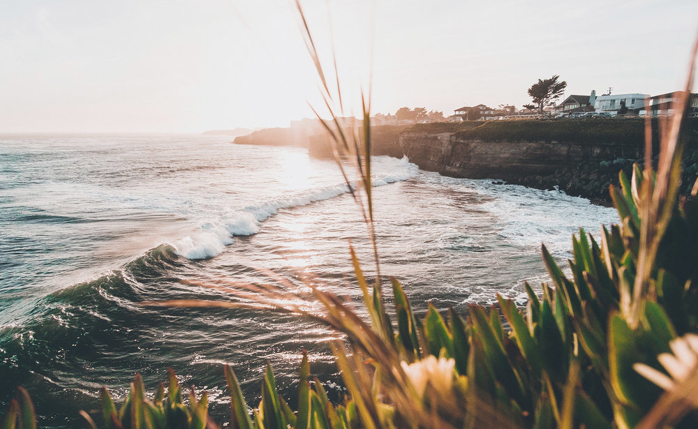 Our Brokerage - Located in Southern California, we understand the intricacies of both the recreational and medical sides