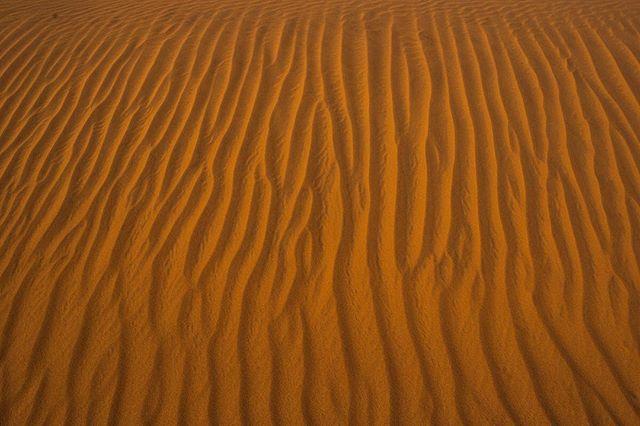There is just something about the Namib desert dunes - it mesmerizes you!⠀ .⠀ .⠀ .⠀ #adventureseeker #doyoutravel #wheretonext #travelmore #goexplore #wonderfulplaces #seekmoments #photographyislifee #lostinthedesert #namibdesert #namibdesertdunes #namibia🇳🇦