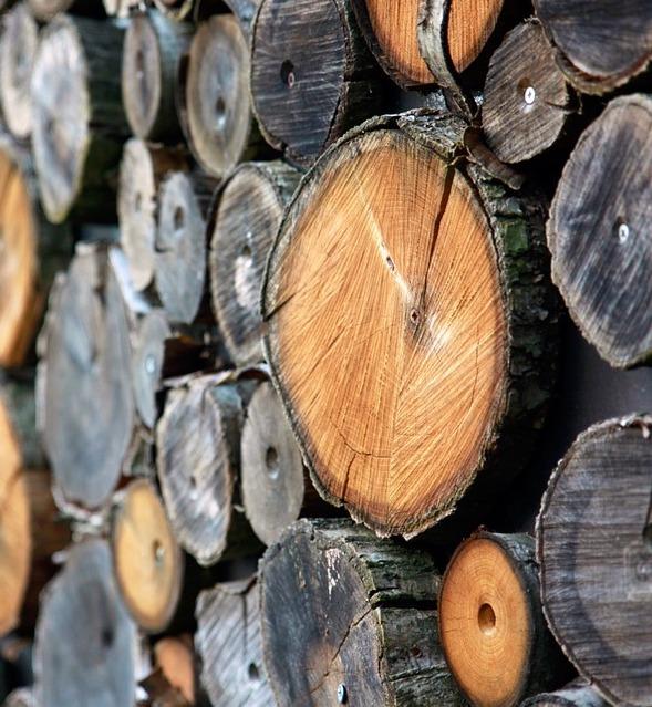 wood-700273_960_720.jpg