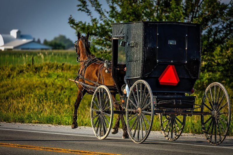 Amish pic website 3.jpg