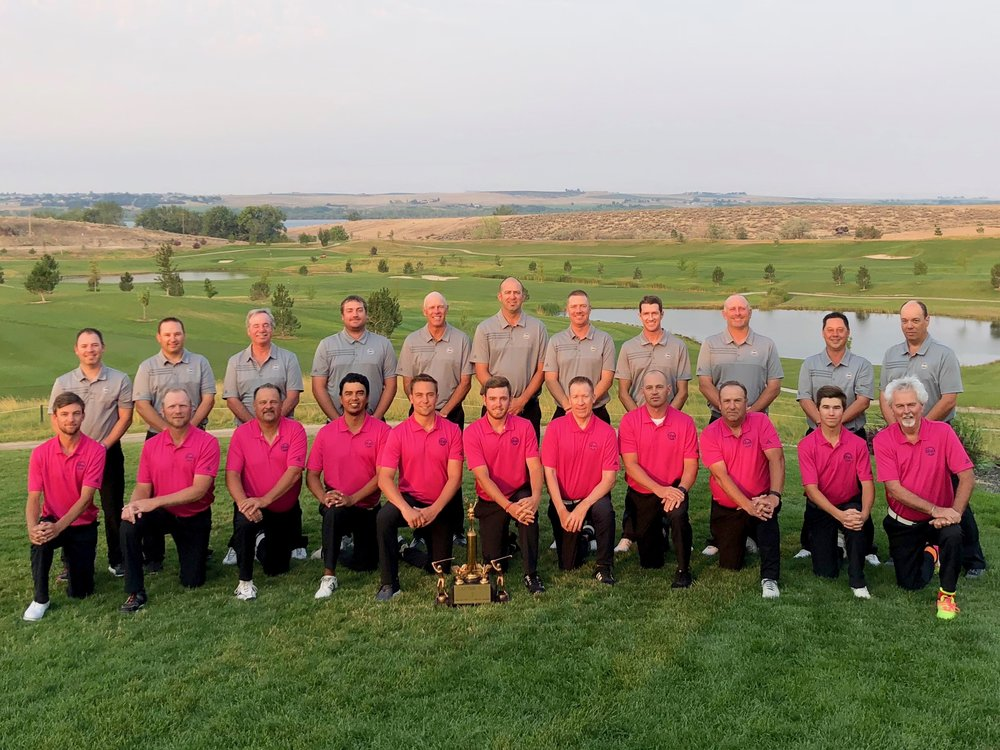 PGA team in grey, IGA team in pink