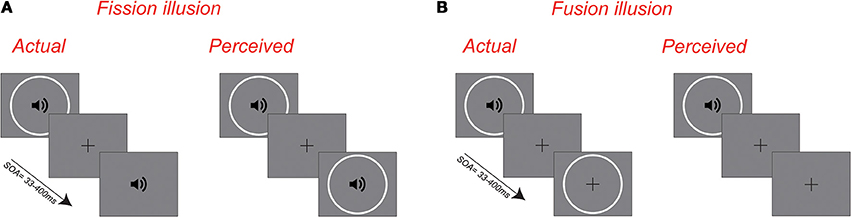 sound induced flash