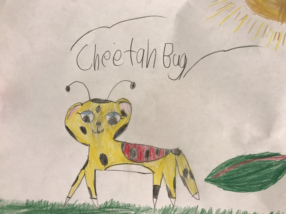 cheetahbug.jpg