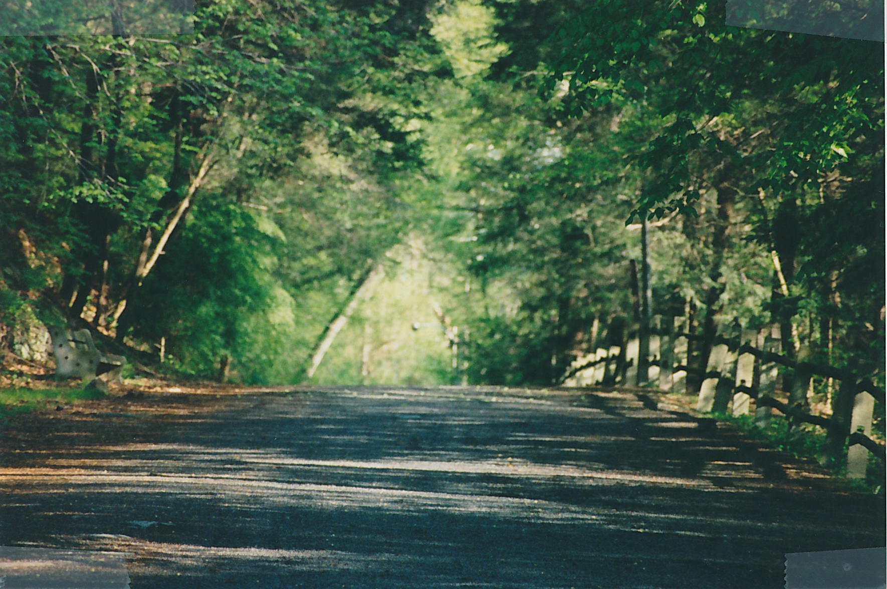 Wissahickon Trail