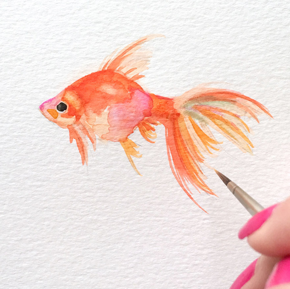 gold-fish.jpg