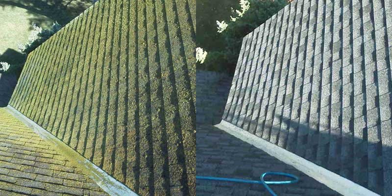 Roof Shampoo Before and After