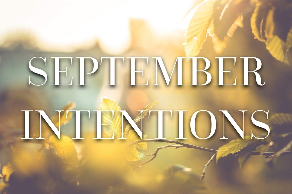 autumn, autumn leaves, intentions, mindfulness for beginners, meditation tips