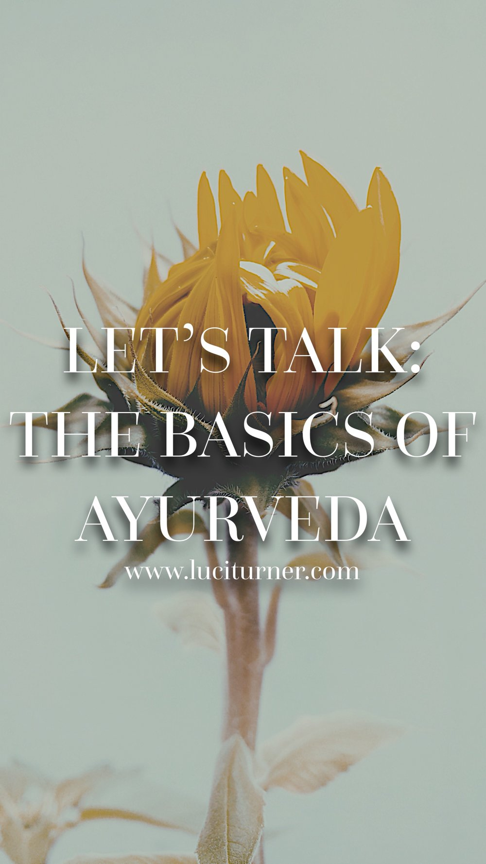 ayurveda, ayurvedic medicine, ayurveda for beginners, basics of ayurveda, holistic medicine, lifestyle blog, wellness blog, health blog, yoga blog, meditation, mindfulness, meditation for beginners,