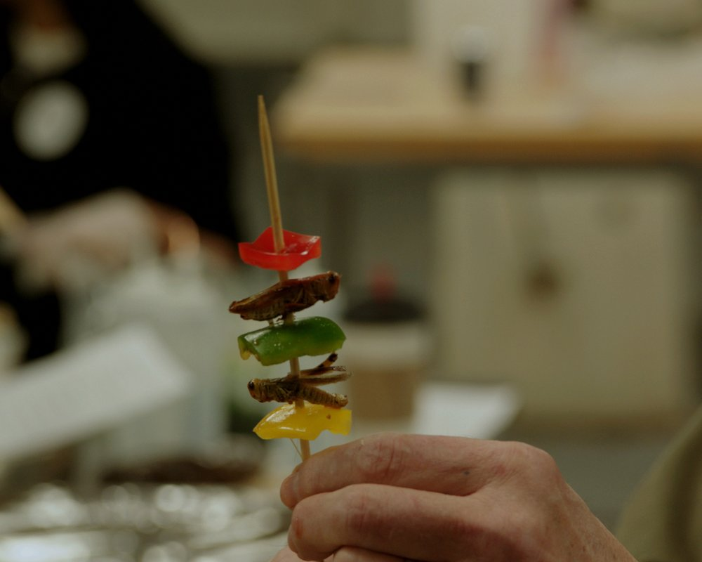 Bugs on the Menu 02 - The Bug Chef prepares grasshopper skewers for The Explorers Club banquet in New York City.jpg