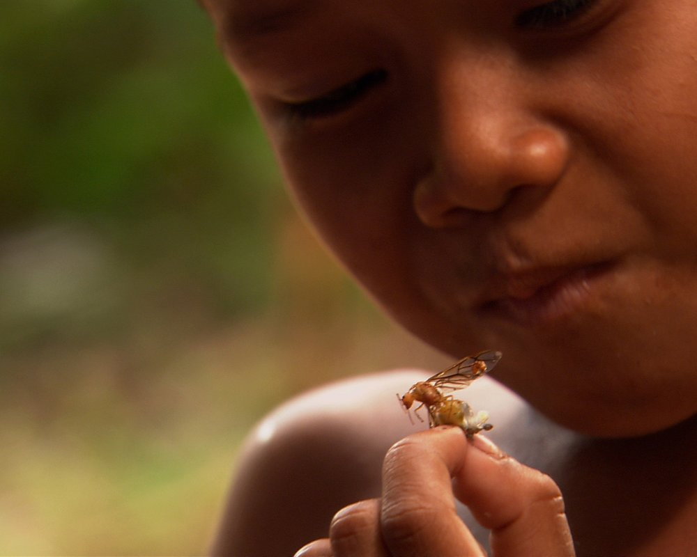 Bugs on the Menu 14 - A child samples the local insects in Siem Reap Cambodia.jpg