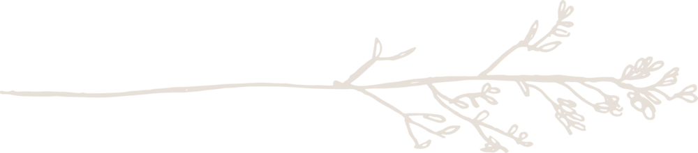 Branch-1.png