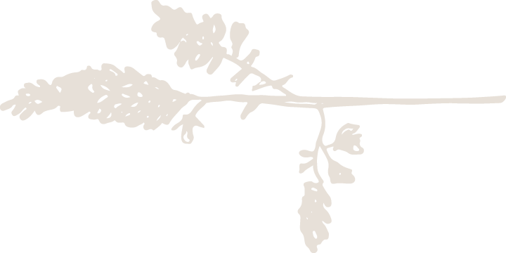 Branch-4.png