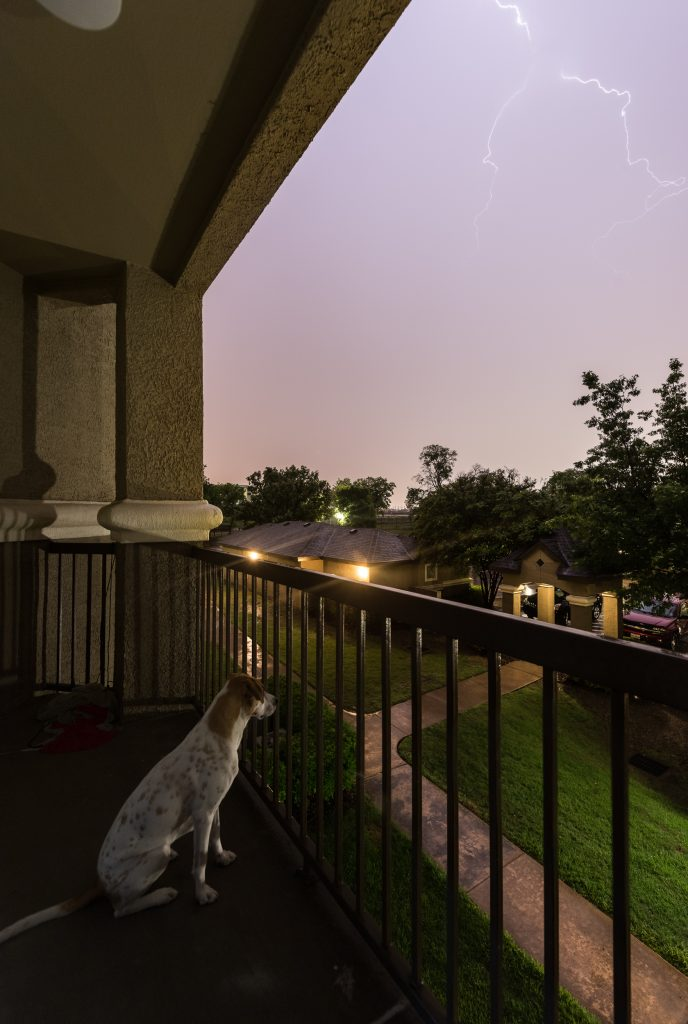 Finally, after hours and hours of driving, we are home. Time to reflect on the day and take in one last display of lightning before some sleep.