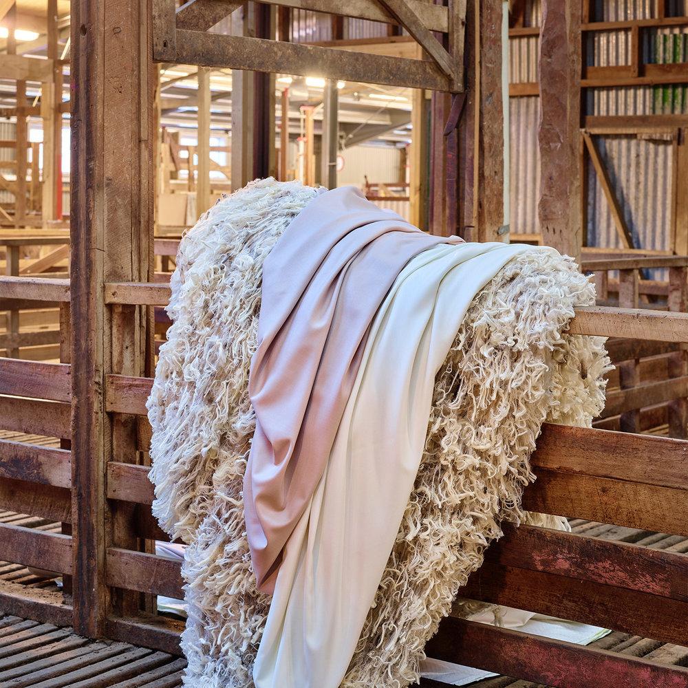 merino-silk-textile-wool.jpg