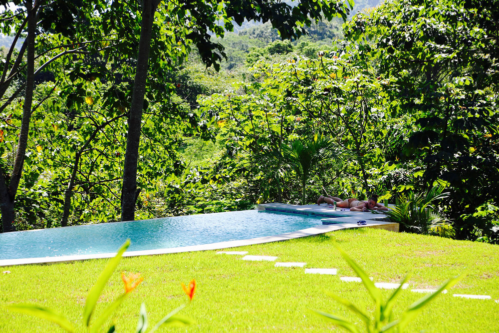 Lawn and Pool Wild Sun