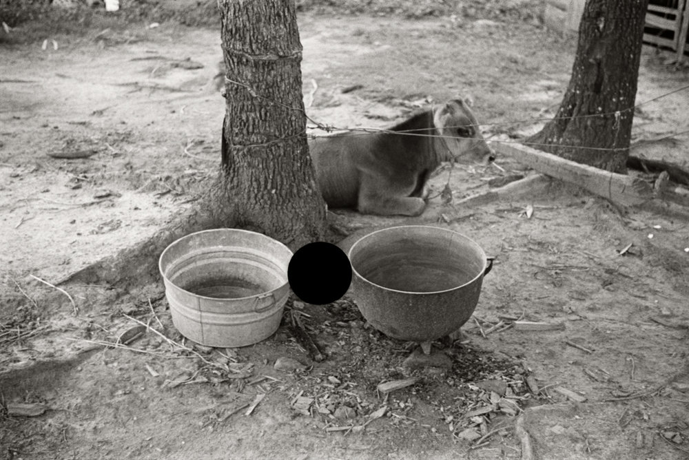 53. Untitled. Alabama. 1936. Walker Evans. 8a44615.