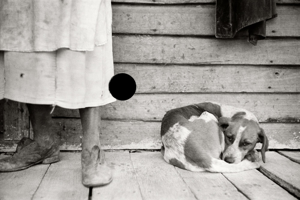 58. Sharecropper and dog. North Carolina. 1938. John Vachon. 8a03148.