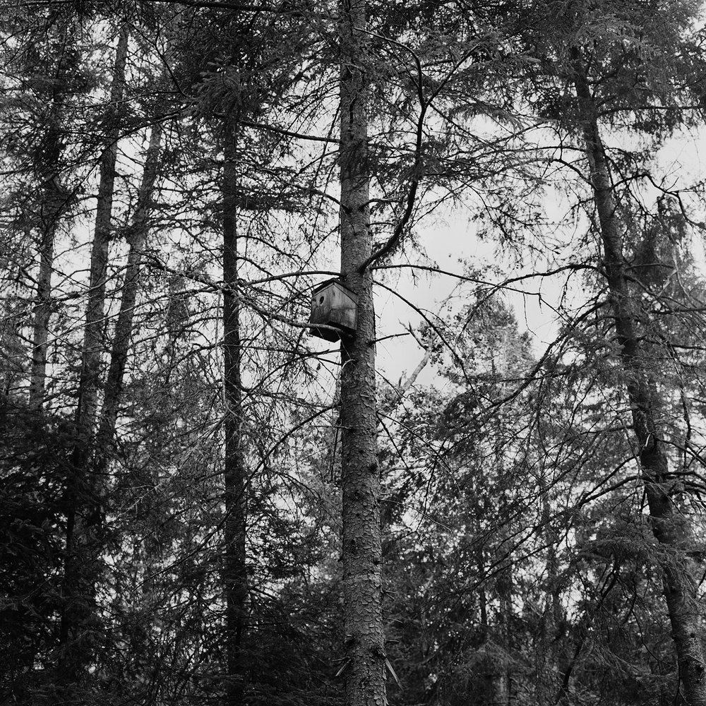 14. Birdhouse, Six Nations Museum, Onchiota, NY. 1998. Toned Gelatin Silver Print.