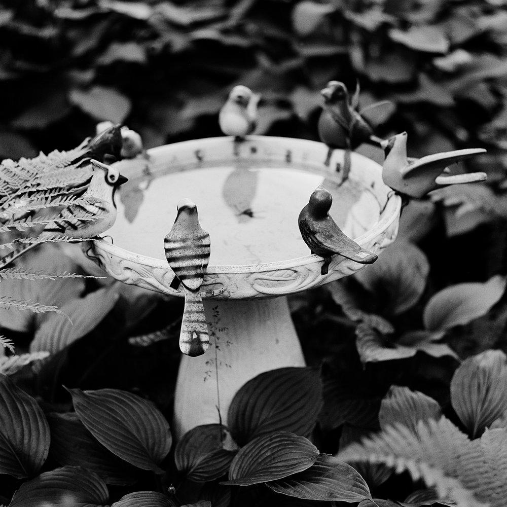 "18. Birdbath. Lily Dale. 1996. Toned Gelatin Silver Print. 15""X15""."