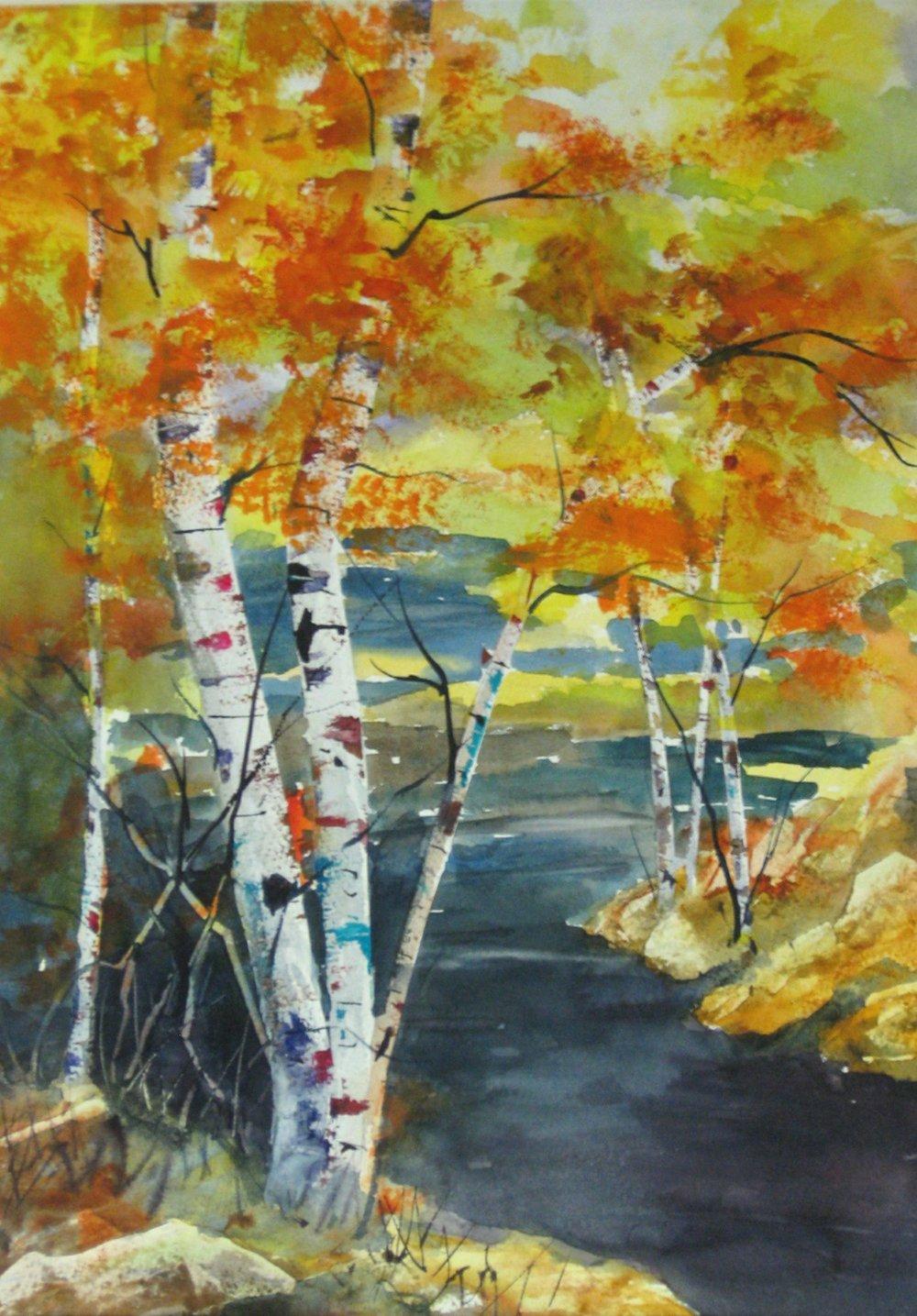 Birch_Stream_1-2-2012_009.JPG