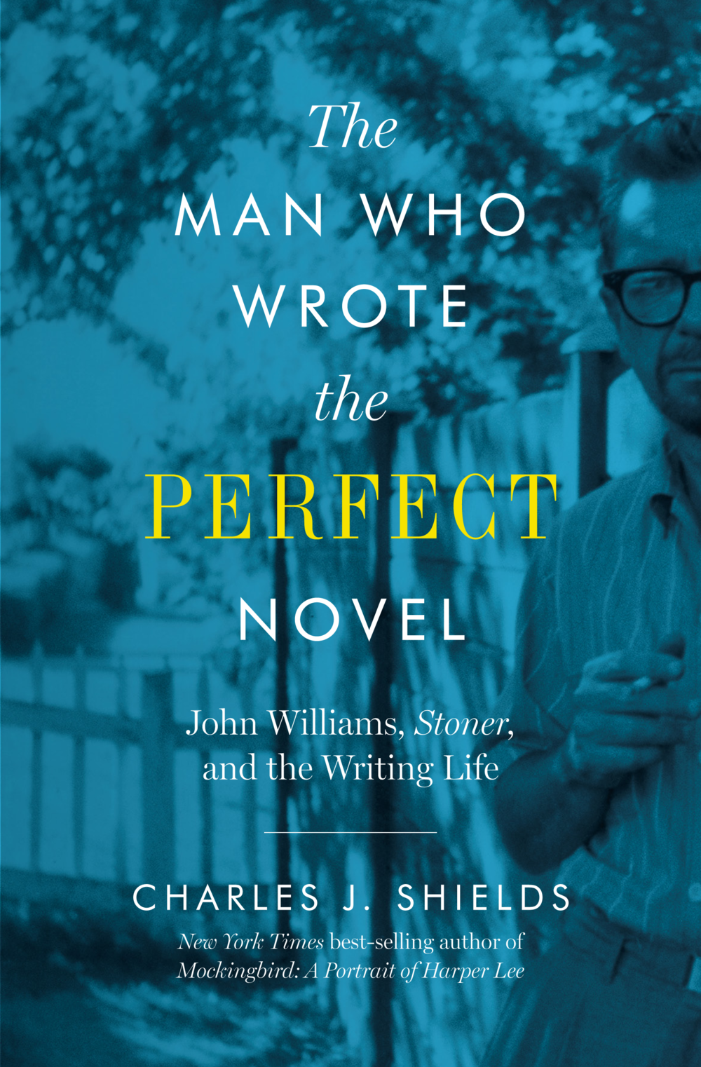 COVER_The Man Who Wrote the Perfect Novel.png