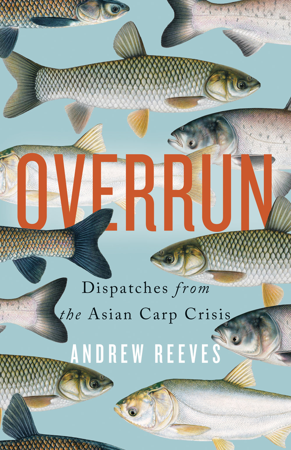 Overrun_cover_hi-res.jpg