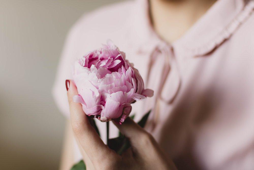flora-flower-hand-112324.jpg