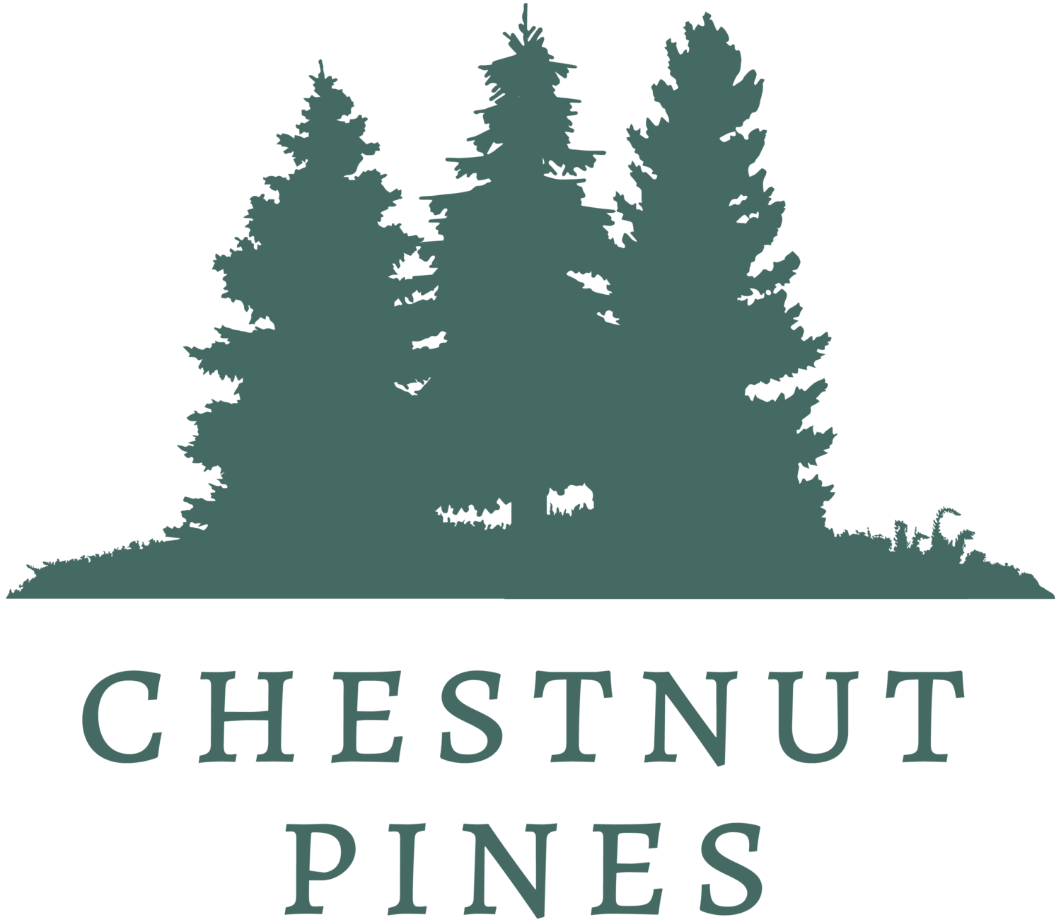 Chestnut Pines