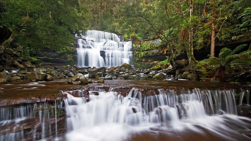 Mole Creek – A Centre for Wonderful Walks and Nature Trails - If you enjoy walking amidst nature's wonders, Mole Creek is an ideal base. Click the button below for more information about some of the walks and nature trails close by, including Westmorland Falls, Liffey Falls and the Meander Forest Reserve.