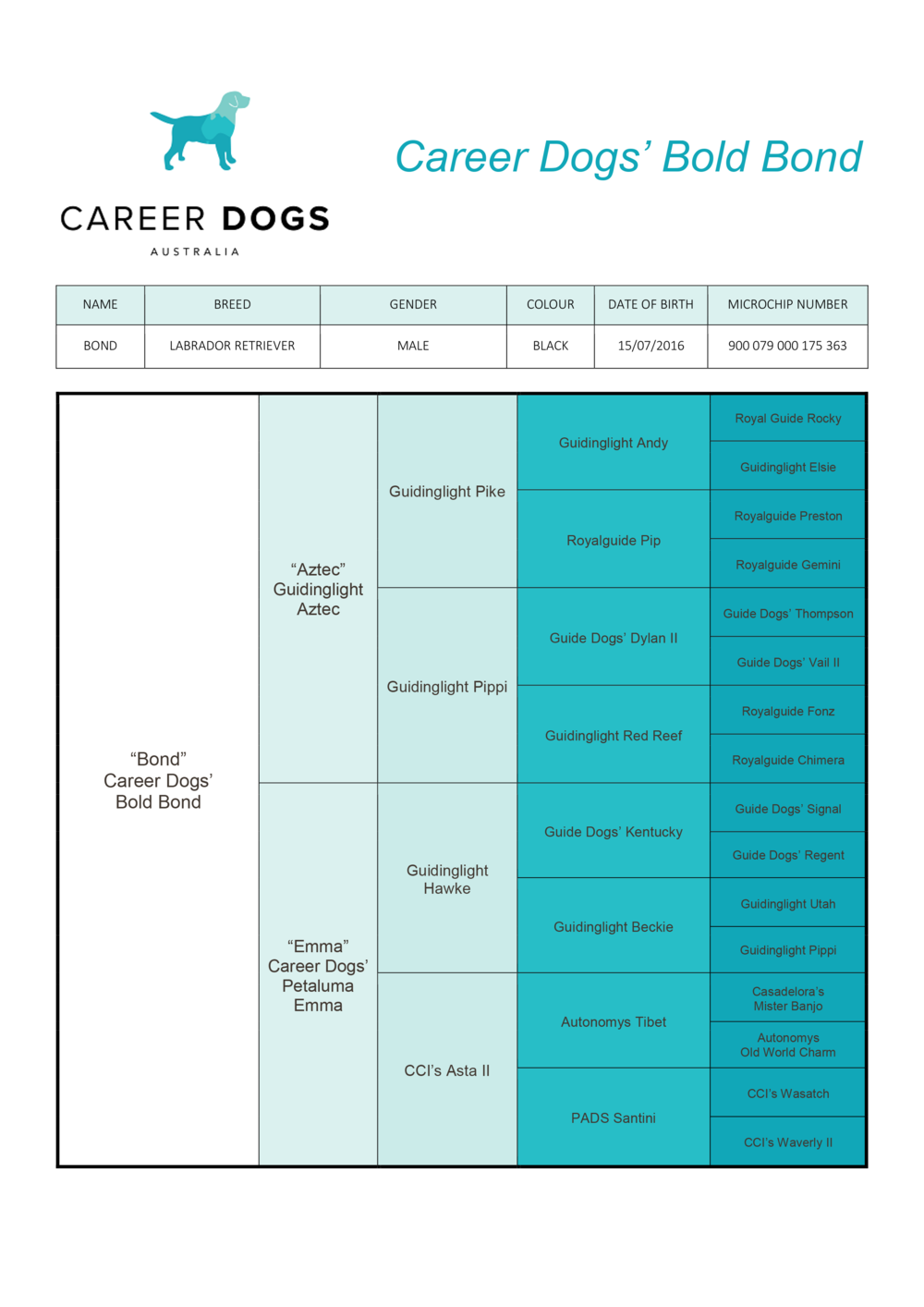Bond_Pedigree_Career-Dogs'-Bold-Bond.png