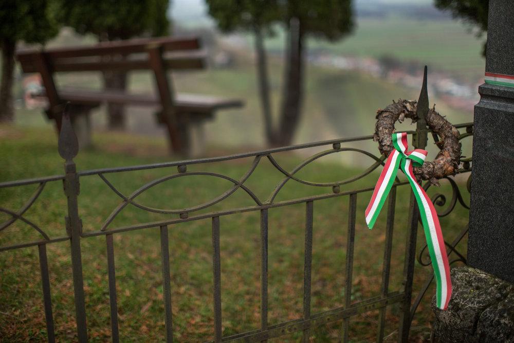 Madžarski davkoplačevalci so doslej dali najmanj šest milijonov evrov za lendavsko nogometno akademijo. Foto: Matej Povše