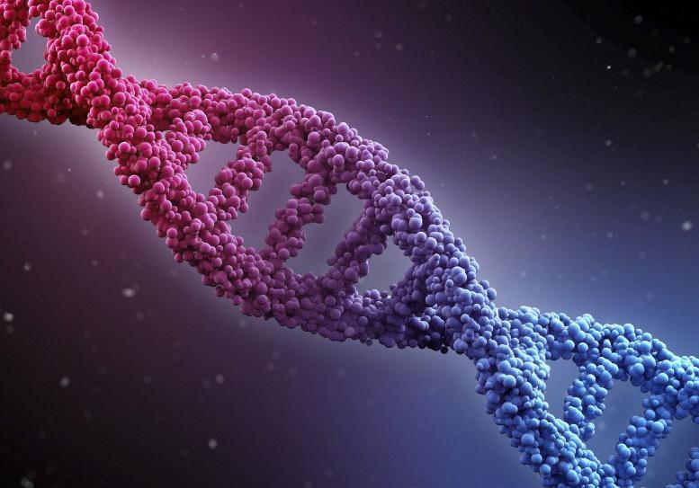 Geneticspic.jpeg