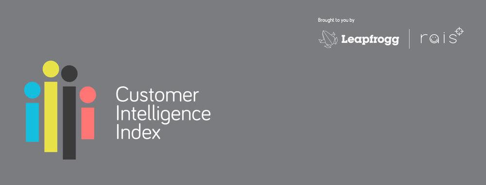 Customer Intelligence Index banner