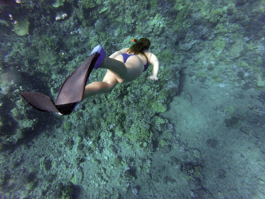 Carib_Snorkeling.jpg