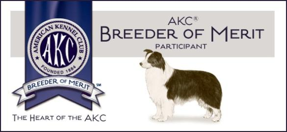 Breeder_of_Merit-585x269.jpg