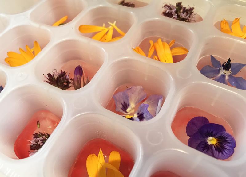 SA_Flower ice cubes_non-alcoholic G&T.jpg
