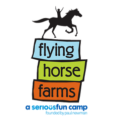Flying Horse FarmsMt. Gilead, OH | June 2017, August 2018Volunteer camp Counselor - Oversaw seriously ill children ages 7-16 for a week of summer camp.Aided doctors in the distribution of critical medication during everyday activities.Fostered a positive attitude and lead directly with counterpart volunteers while leading the children in their everyday activities.