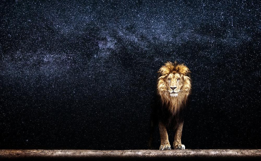 Wildlife & Filming Sites - 10 days, 9 nightsMid-range Safari