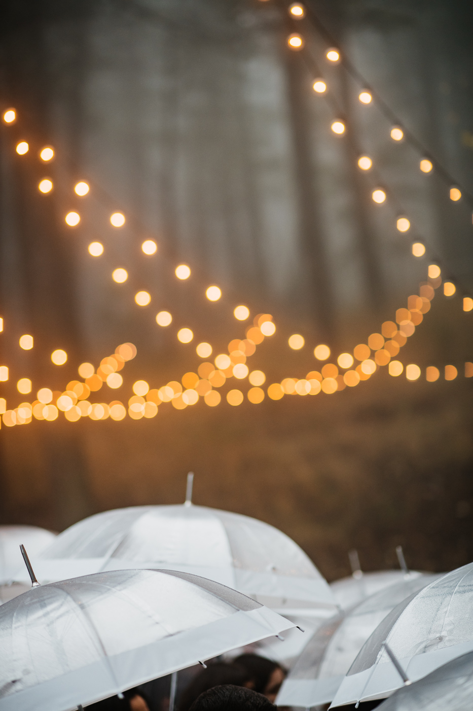 Candice Rawlin Wedding PHOCO Photography Pines Genesee Golden Colorado Fog -30.jpg