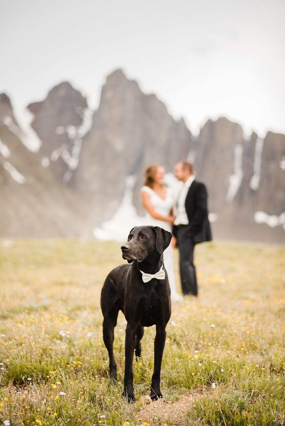 PHOCO Best of 2017 Fort Collins Colorado Photographer Patrick-22.jpg