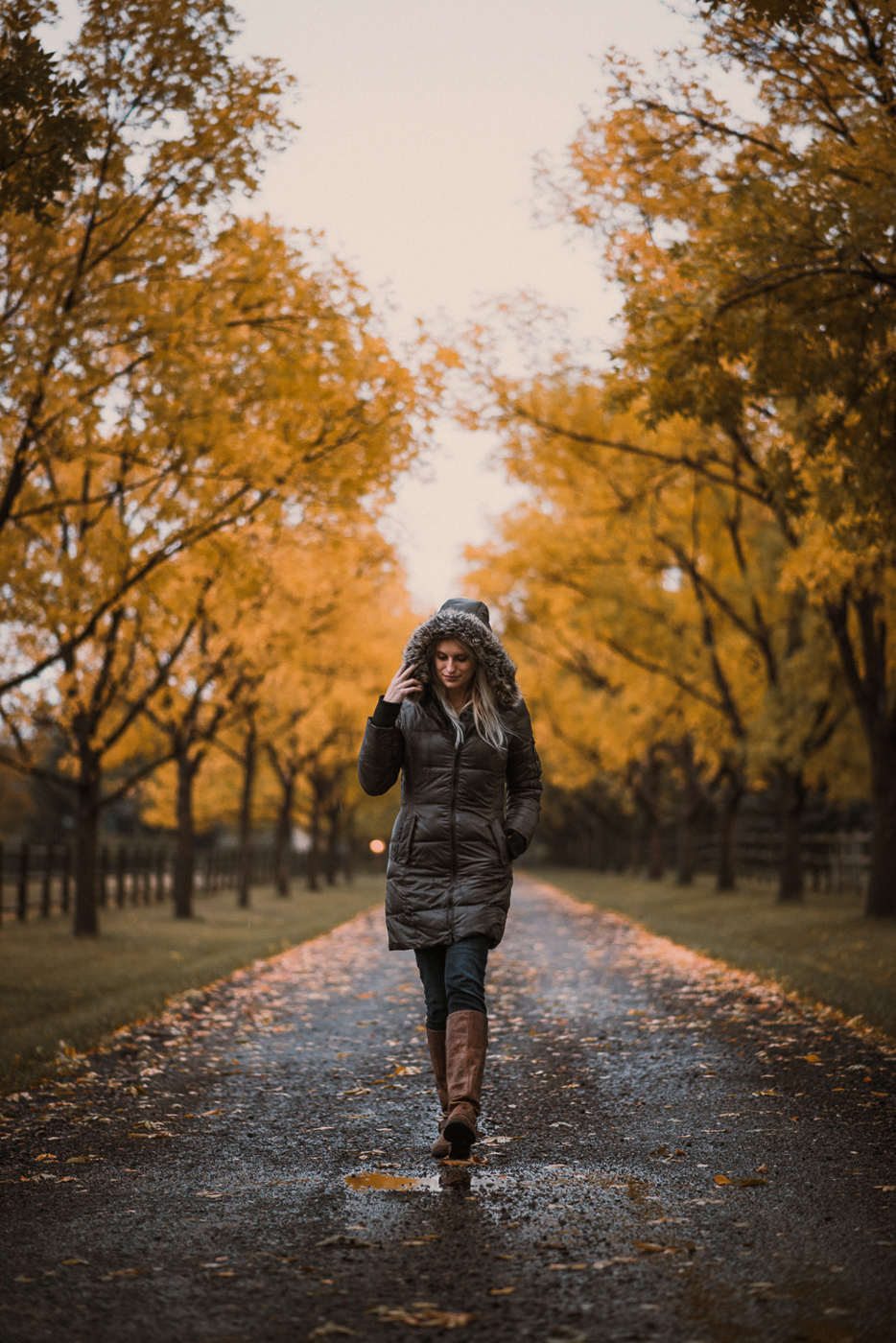 PHOCO Best of 2017 Fort Collins Colorado Photographer Ryan-42.jpg