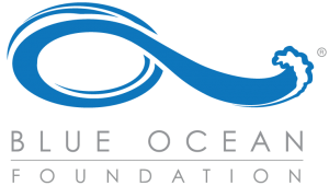 BlueOcean-300x170.png