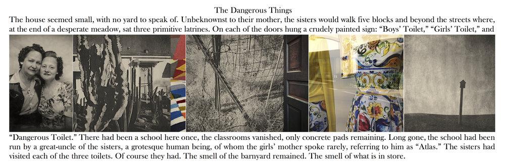 The Dangerous Things , 2018.
